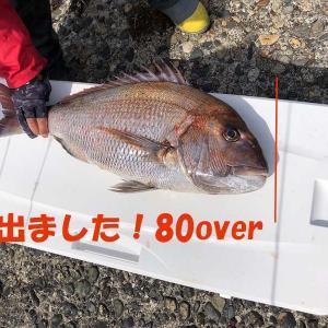 4月24日粟島近海ジギング釣果情報とGW営業のご案内