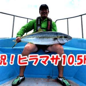 キャスティング釣果情報6月12日|ヒラマサ・デカマサ