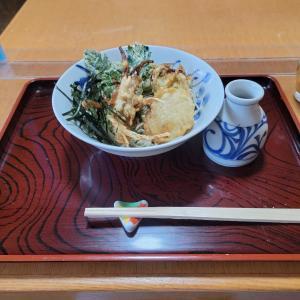 【訪問実食レビュー】蕎麦 蓬 ~十割八千代蕎麦編~