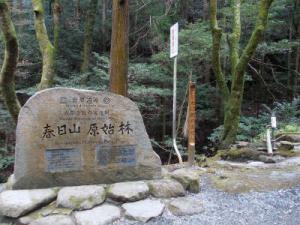 鹿と石窟仏と~奈良奥山ドライブウェイ【奈良】