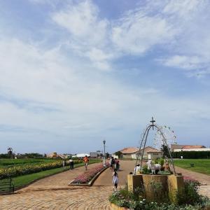 """入園無料の子供の遊び場 """"長井海の手公園ソレイユの丘"""" に行ってきました。"""