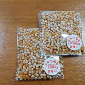 三浦産ポップコーンの種の販売シーズンがやってきました ^^