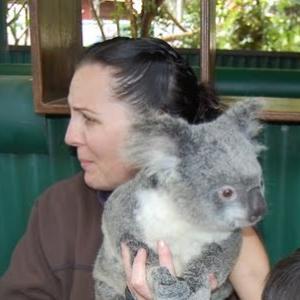 コアラ抱っこ!Currumbin Wildlife Sanctuary 体験談♪