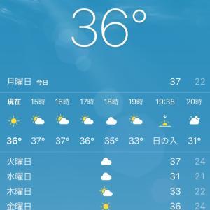 暑さは暑さで制す?