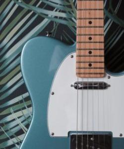 ギター初心者 テレキャスターのオススメは?解説します。