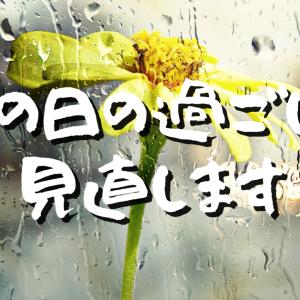 【Day457】雨の日の過ごし方見直します|大事なのはそっちじゃなかった