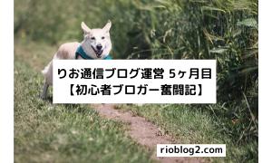 りお通信ブログ運営 5ヶ月目 【初心者ブロガー奮闘記】