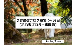 りお通信ブログ運営 6ヶ月目【初心者ブロガー奮闘記】
