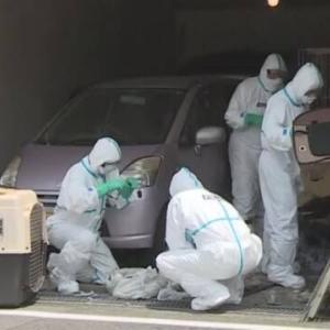 京都 八幡 神様と信頼された保護活動家の住宅で犬や猫数十匹の死体