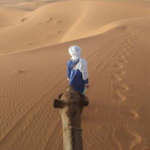 【モロッコのおすすめ】世界一周者が厳選する