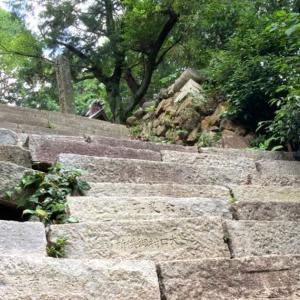 癒しのスポット苔の壁 尾張富士 (愛知県)