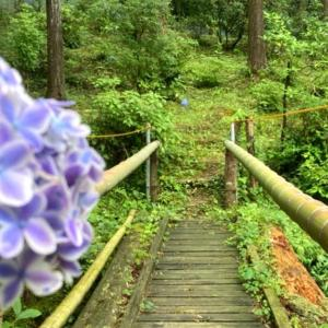 桂昌寺と帰りに寄った紫陽花のみなみ子宝温泉駅 (岐阜県)