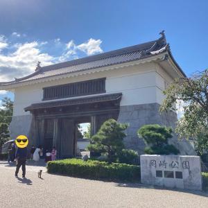 【愛知県】徳川家康公の生誕の地岡崎市で岡崎城を散策