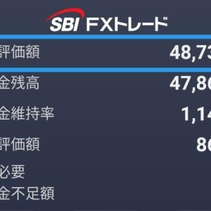 【FX】5、6月取引