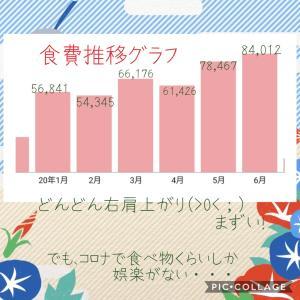 【お金のはなし】1年間の食費推移グラフ