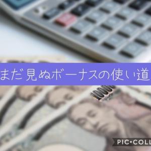 【家計管理】2021夏ボーナスの使い道の妄想