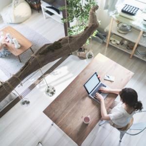 【1万円以下】元家具メーカー勤務おすすめ!在宅ワークチェア3選