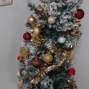 登場! クリスマスツリー