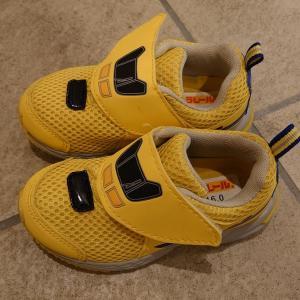お気に入りの靴達