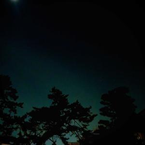 おやすみなさい! Good night!