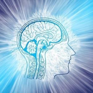 慢性前立腺炎の原因は脳の誤作動?抗うつ薬や抗不安薬が効く?