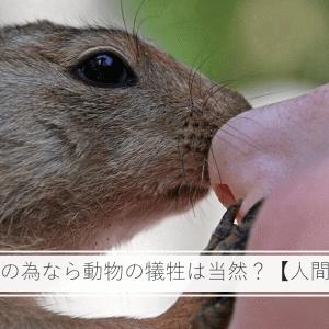 人間の幸せの為なら動物の犠牲は当然?【人間中心主義】