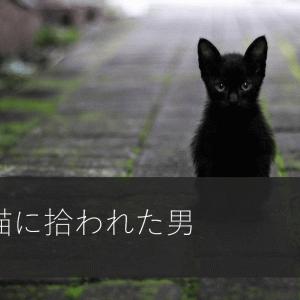 ねこ好きにおすすめしたい1冊!【捨て猫に拾われた男】