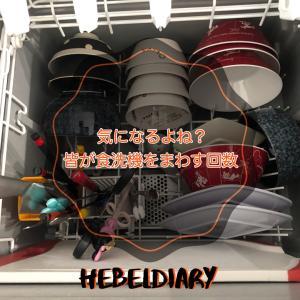 1日に何回食洗機をまわす?アンケートとってみた!