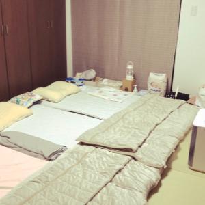 和室や畳で寝るのに布団上げもすのこも不要?ニトリのN-BREATHでカビ対策