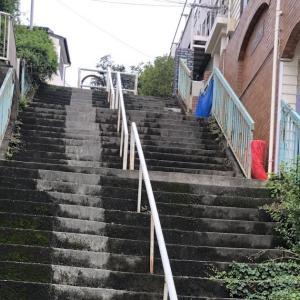 昆虫公園横の階段のさらに奥にある階段