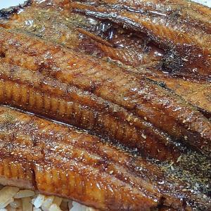 横山さんの鰻