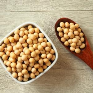 妊娠中ソイプロテインは大丈夫?大豆イソフラボンの量が気になる!