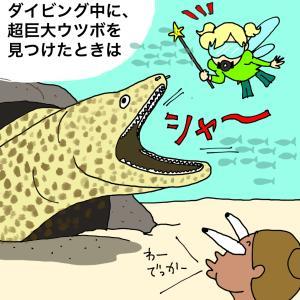 45_猛毒魚と妖精ティンカーベル