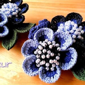 実家の紫陽花たち。 〜2021年初夏