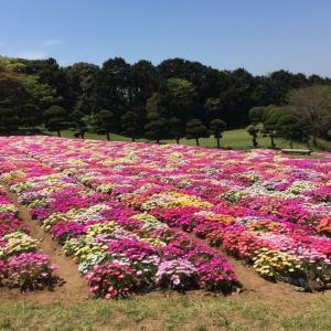九州・山口のまた行きたい観光地