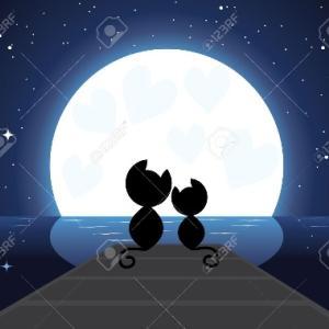意味は無いけど今夜も月が綺麗ですねw