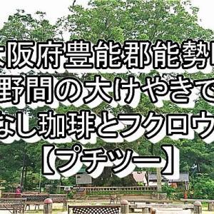 【大阪府豊能郡能勢町】野間の大けやきでありなし珈琲とフクロウ鑑賞【プチツー】