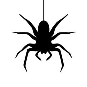 【蜘蛛嫌い必見!】蜘蛛を駆除できるスプレー「蜘蛛の巣消滅ジェット」レビュー