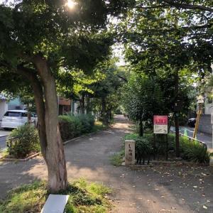 今日の朝ウオーキング 八雲氷川神社〜碑文谷厳島神社
