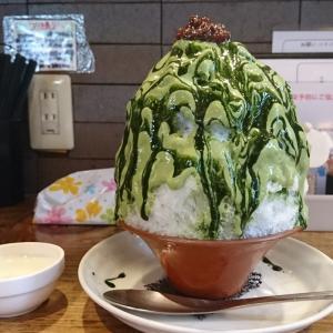 今日のかき氷🍧  抹茶ミルク  〜 「まめ茶和ん」さん