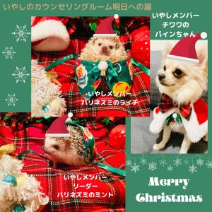 【YouTube】ほっこりと心温まる、いやしメンバーのクリスマス