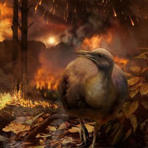 K-Pg境界を越えた鳥類の大量生存の分子的証拠