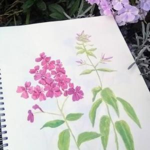 植物の英名と日本名