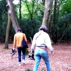 遂にイギリス人向け森林浴体験コース開催!