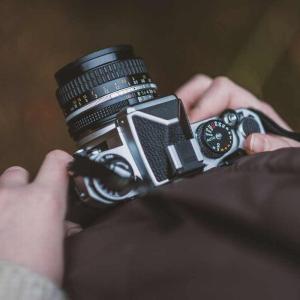 カメラのISO感度とは?上げると(下げると)どうなる?
