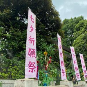七夕なので東京大神宮