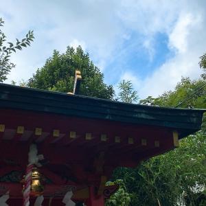 久しぶりの近所の神社参りのアクシデントと思わぬヤフコメの反応