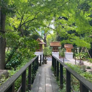 愛宕神社で出世の階段を一気登り