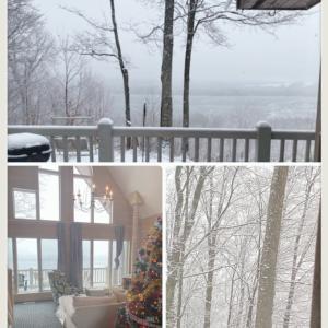 ミシガンは雪。のんびりの日