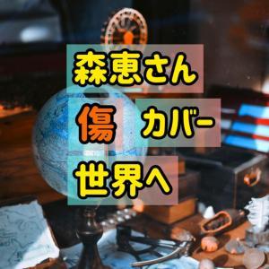 森恵/傷/カバー/日本だけの活動はもったいない/Tami Aulia/コラボ希望